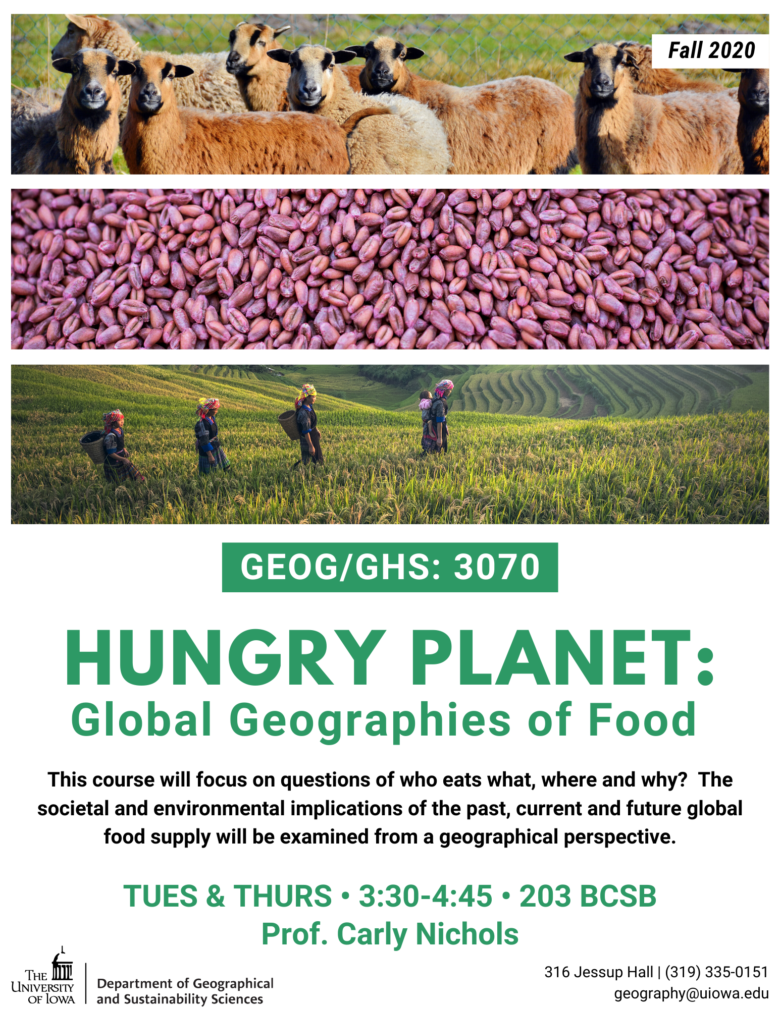 global geographies of food