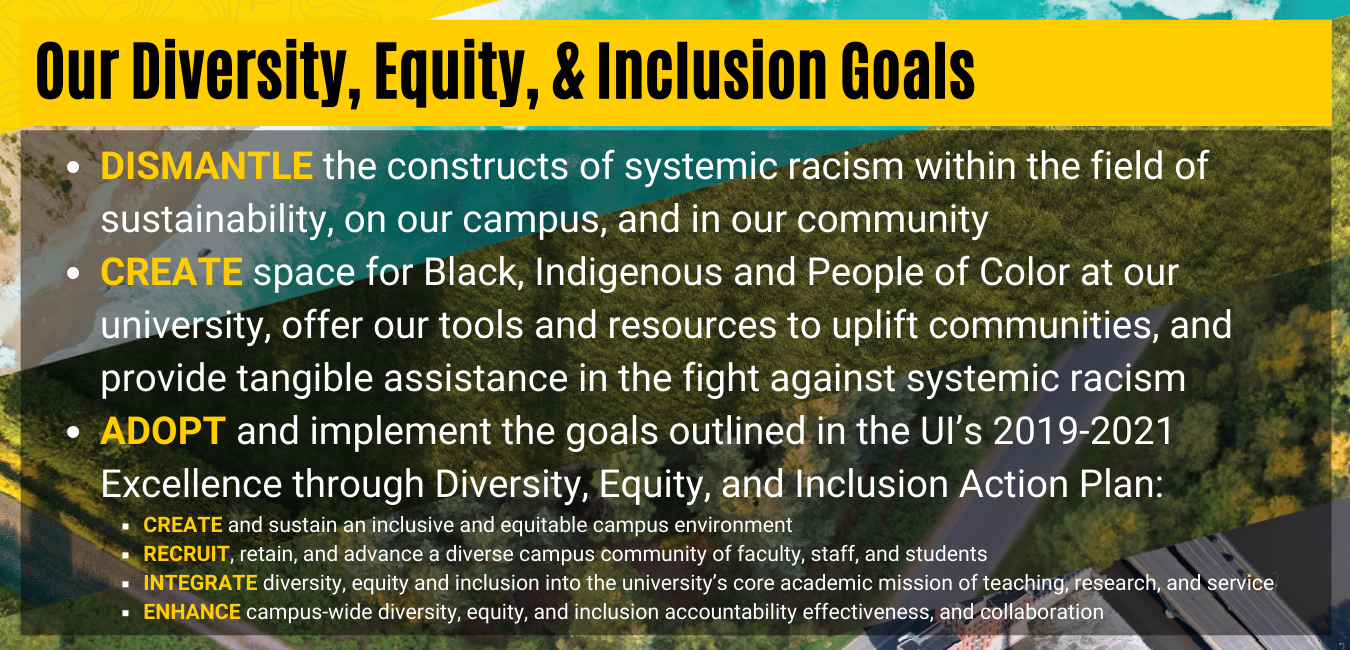 Our Diversity Equity Inclusion Goals