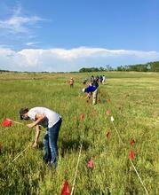 1st Annual Ashton Prairie BioBlitz