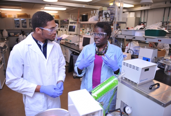 Chemical and Biological Engineering students uiowa