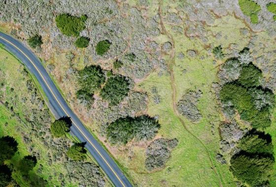 aerial shot of road