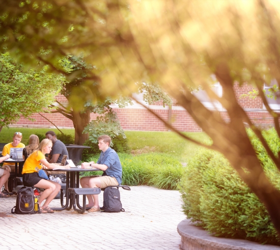Students sitting at table around trees outside in summer