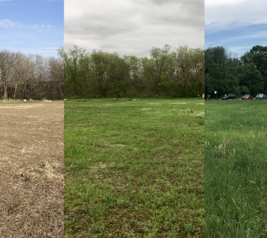 three pictures of the prairie stitched together to show progression through the seasons