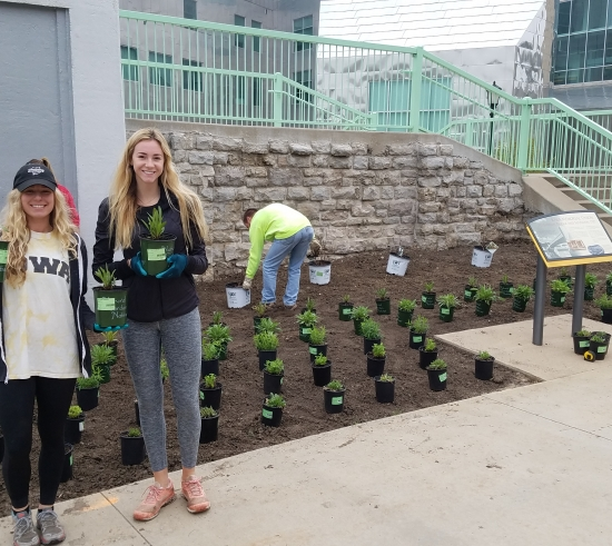 Students planting pollinator garden